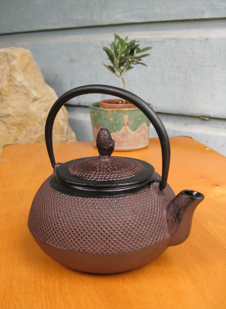 Tetsubin Cast Iron Tea Kettle