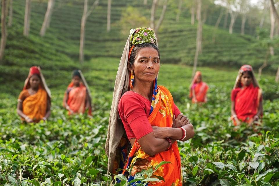 Tea Women