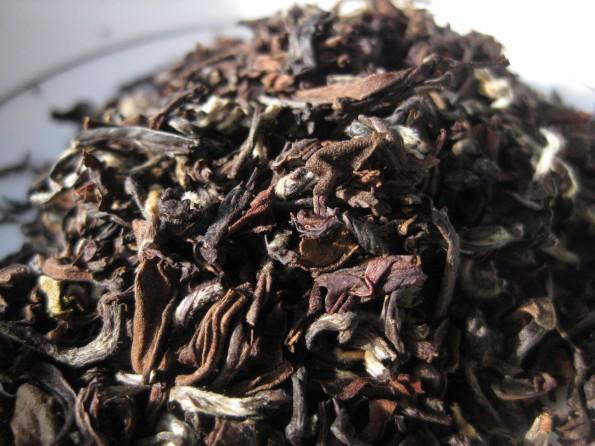 American Tea Room Avongrove Euphoria
