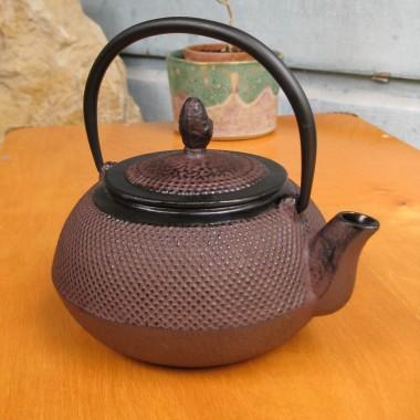 My 1st Tetsubin Tea Kettle