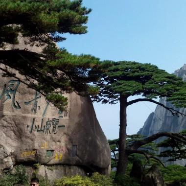 Tea Culture of Wuyi Mountain